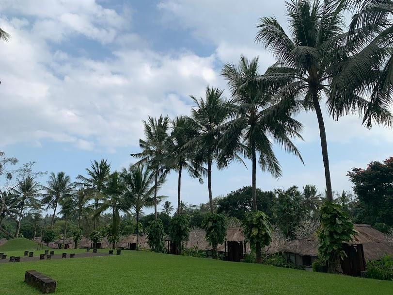 Insula Bali, scurta introducere