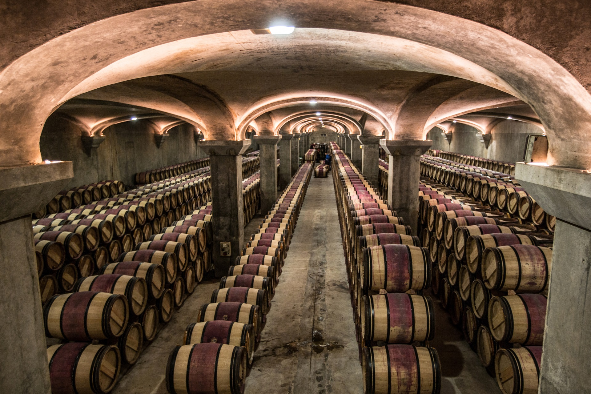 Tentații viticole în Bordeaux