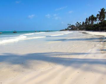 Tanzania Safari si plaja Zanzibar